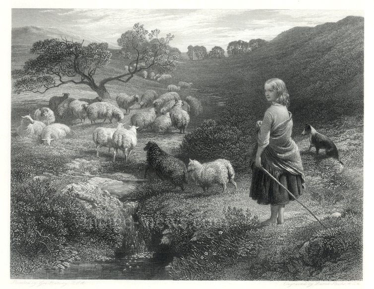 SHERPERDESS,Girl with Sheep and Collie,1859 Engraving