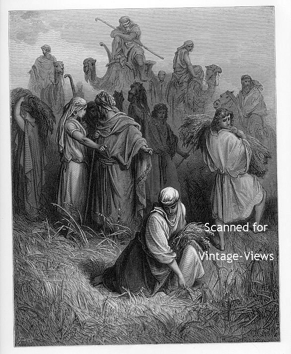 BOAZ AND RUTH, 1870 Dore Bible Engraving