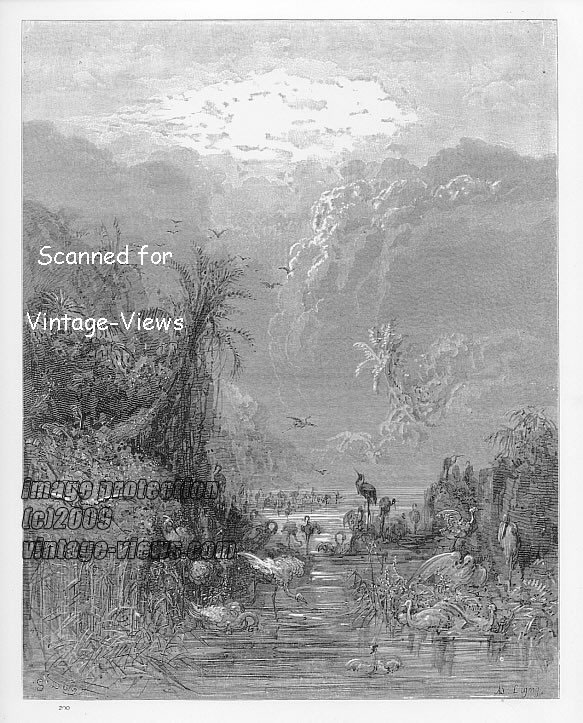 THE CREATION OF BIRDS, Gustave Dore, Paradise Lost, 1870 Antique Engraving