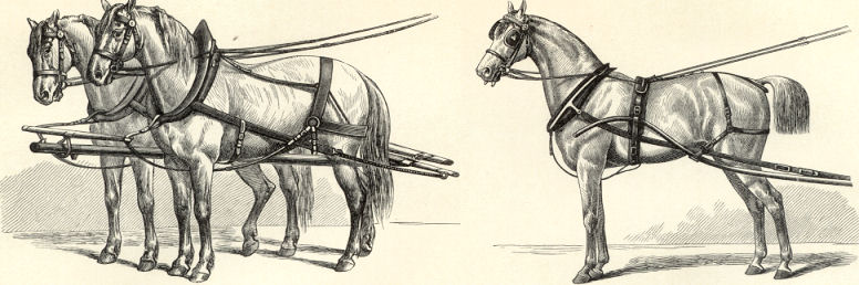 HARNESS FOR HORSES,Antique Engraving