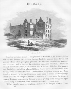 CARBERY CASTLE Kildare County Ireland
