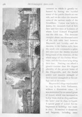 ANCIENT CASTLE OF THE GERALDINES Kildare County Ireland